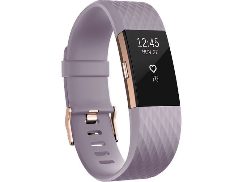FITBIT Charge 2 Lavender Rose Gold Small EMEA - (FB407RGLVS-EU)